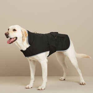 Fire Hose Dog Jacket