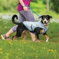Cooling Core Dog Vest GRAY SM