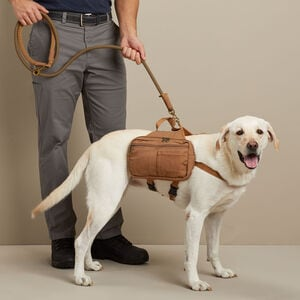Fire Hose Dog Saddle Bags