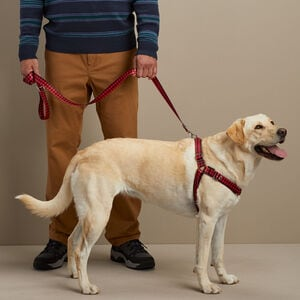 Ecoweave Front Lead Harness