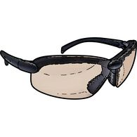 Duluth Trading Photochromatic Safety Glasses BLACK