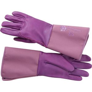 Women's Tuscany Gauntlet Gloves